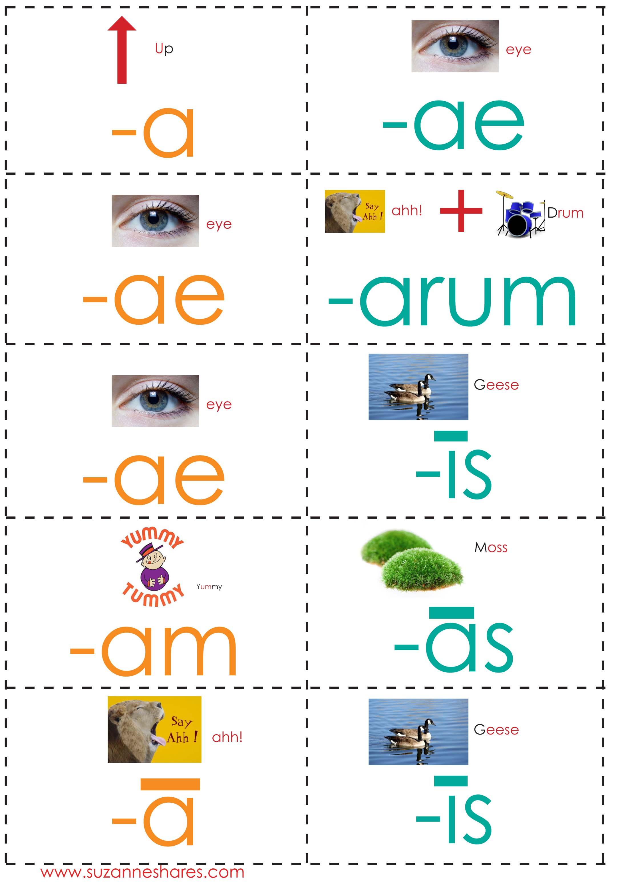 Latin Conjugations Perfect Stem Worksheets | Teaching ...  |Latin Word Endings