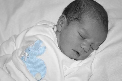William's birth.blue bunny